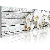 Cuadro 120x40 cm - 3 tres colores a elegir - Impresion en calidad fotografica - Cuadro en lienzo - orquidea flores b-A-0072-b-d 120x40 cm B&D XXL