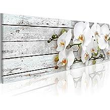 murando Cuadro en Lienzo 120x40 cm - 3 tres colores a elegir - Impresion en calidad fotografica - Cuadro en lienzo - orquidea flores b-A-0072-b-d 120x40 cm