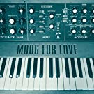 Moog for Love [Vinyl Single]