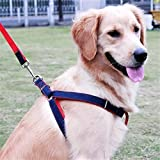 Lukzer Adjustable Soft Padded Dog Harness with Dog Leash (55 inch Long) for Your Pet Dogs with Maximum Chest Size 21 inch