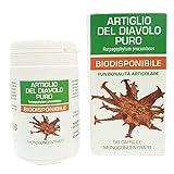 Artiglio del Diavolo Puro Naturpharma 50 Vegan capsule da 500 mg di Estratto Puro Titolato al 1% in Arpagoside | integratore naturale che contribuisce a favorire la normale funzionalità articolare