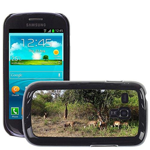 Grand Phone Cases Bild Hart Handy Schwarz Schutz Case Cover Schale Etui // M00142183 Spotted Deer Chital Axis Deer // Samsung Galaxy S3 MINI i8190 - S3 Samsung Case Deer Handy Galaxy