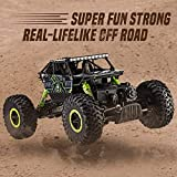 Remote Controlled Rock Crawler Rc Monster Truck, 4 Wheel Drive, 1:18 Scale 2.4 Ghz (Random Colour) (Green)
