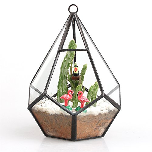 modern-artistic-clear-hanging-air-plants-planter-tear-diamond-glass-geometric-display-terrarium-tabl