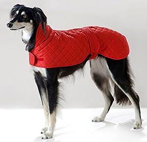Cosipet Greyhound Anorak, Bleu