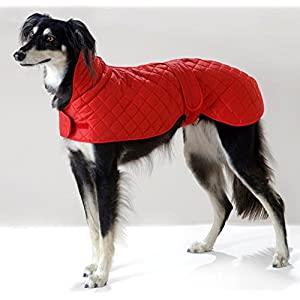 Cosipet-Greyhound-Anorak-Blue
