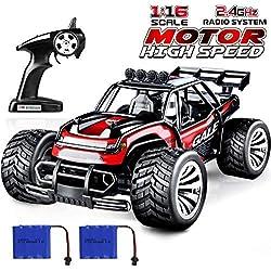 joylink Electric RC Car 1:16 RC Car Racing Truck Offroad 2WD 2.4 GHz Control Remoto de Alta Velocidad RTR RC Buggy RC Monster Truck con batería Recargable (1512)