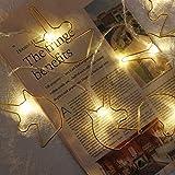 3 Mt 20 LEDs Gold Metall Einhorn Licht, leuchtende LED Lichterketten für Innen Party Hochzeit...