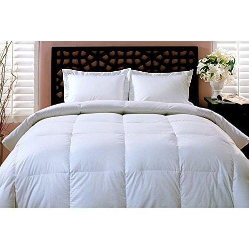 Luxuriöse alle Jahr Gewicht 100% weiße Gänsedaunen Tröster Bettdecke, baumwolle, weiß, Twin (Twin Bettdecke 100 Baumwolle)