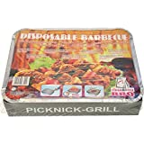 5x fire and flame Grill Einmalgrill 500g 27x22x5cm mit Grillkohle
