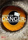 Sense of Danger: How Animals Anticipate Disaster