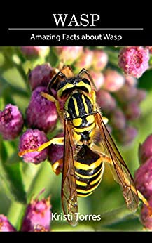 Epub Descargar Amazing Facts about Wasp