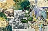 Die Abenteuer des Alexander von Humboldt: Eine Entdeckungsreise; Halbleinen, durchgängig farbig illustriert - Andrea Wulf