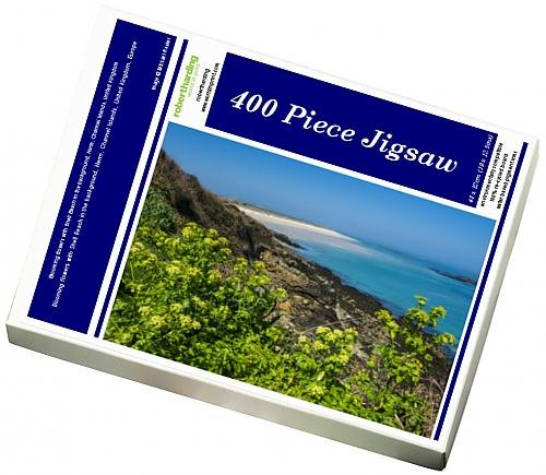 photo-jigsaw-puzzle-of-blooming-flowers-with-shell-beach-in-the-background-herm-channel-islands
