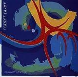 Shaken & Stirred by Robert Plant