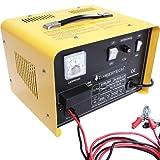 Timbertech KFZ Batterieladegerät Autobatterie Ladegerät 700W Werkstatt-Ladegerät Leistung 12V/24V