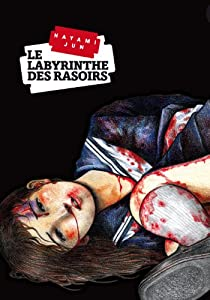 Le Labyrinthe des Rasoirs Edition simple One-shot