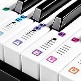 TimberRain Klavier Aufkleber für 49/61/76/88 Tasten, Transparent und abnehmbar Aufkleber für Kinder und Anfänger, mit praktischer Anleitung