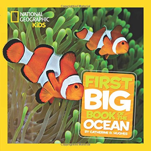 Little Kids First Big Book of the Ocean (First Big Book)