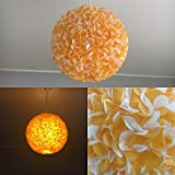 Sunbeam, Lampe Leuchte Lampenschirm Pendelleuchte Pendellampe Hängeleuchte Hängelampe Papierleuchte Papierlampe Reispapierlampe Designerlampe Wohnzimmerlampe Schlafzimmerlampe Deckenlampe