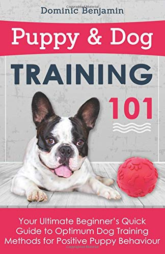 Puppy & Dog Training 101: Your Ultimate Beginner's Quick Guide to Optimum Dog Training Methods for Positive Puppy Behaviour