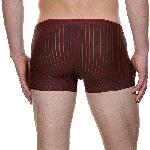 bruno banani Herren Retroshorts Short Performance Rot (rubin/anthrazit stripes 2049)
