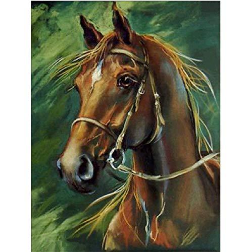 MAIYOUWENG Holzpuzzle 1000 Teile Pferd Karte Hohe Qualität Große Größe 1000 Teile Holzpuzzle, Einzigartige Hauptdekorationen Und Geschenke (Puzzles Und Drachen-geschenk-karte)