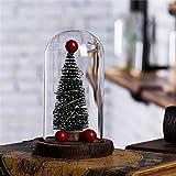 SUNSETGLOW Luce Notturna per Bambini LED di Ricarica USB Pino di Natale Luce Notturna Bottiglia Bottiglia di Vetro Regalo di Natale/Decorazione della casa