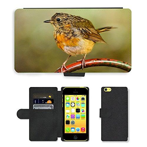 Just Mobile pour Hot Style Téléphone portable étui portefeuille en cuir PU avec fente pour carte//m00140353Old World Moucherolle Robin Oiseau//Apple iPhone 5C