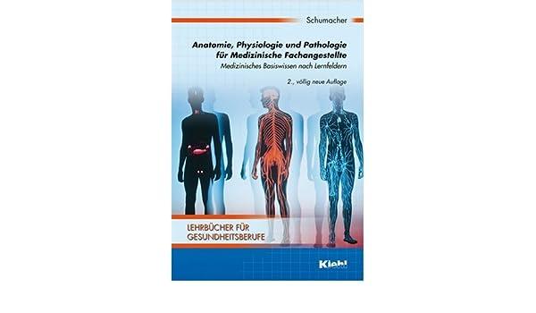 Nett Anatomie Und Physiologie Für Gesundheitsberufe Fotos - Anatomie ...