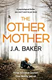 The Other Mother by J.A. Baker