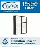 Best Filtres GÉNÉRIQUE Hepa Air - Hamilton plage Filtre HEPa Designed To Fit Hamiton Review