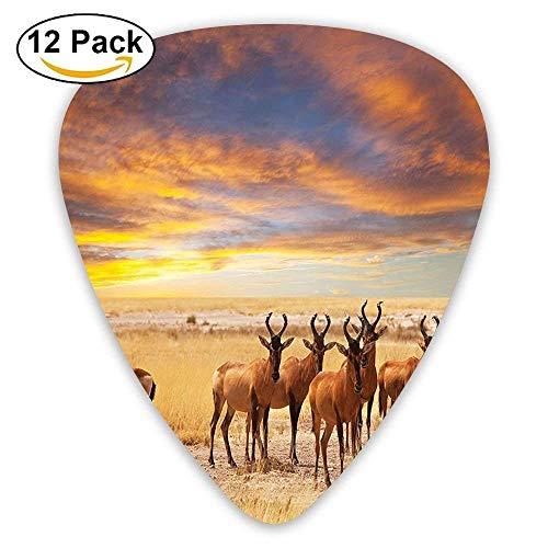 Antilopen-Menge auf Wiese bei Sonnenuntergang Tropic Exotic Savannahs African Animals Guitar Picks 12 Pack Für E-Gitarre, Akustikgitarre, Mandoline und Bass (Antilope-größe 6)