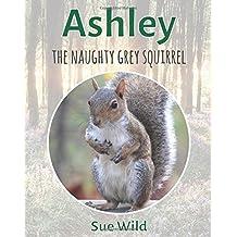 Ashley: The naughty grey squirrel: Volume 3 (U.K. Mammals)