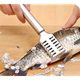 iDream Stainless Steel Fish Scale Remover, Silver