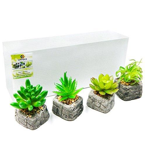 OFFIDIX Artificial Plantas de casa/oficina decoración juego de 4 moderna decoración de oficina pequeños Mini plástico Plantas Suculentas Verde Artificial en maceta, Plantas de interior