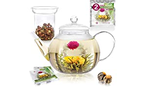 Teabloom Stovetop Safe Glass Teapot (34-40oz/1000-1200ml) with Removable Loose Tea Glass Infuser – Includes 2 Blooming Teas – Premium Quality Teapot Gift Set