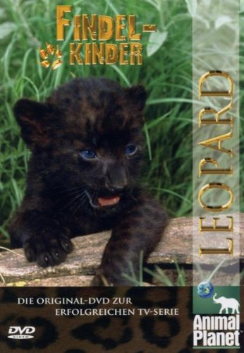 Animal Planet - Findelkinder, Vol. 2: Leoparden