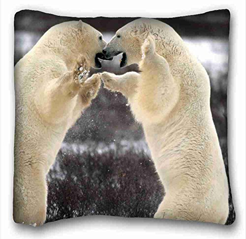 Top-twin-matratze (Generic Personalisierte (Tiere Vögel Bald Eagle In Flight Alaska) Custom Baumwolle & Polyester Weich Rechteck Kissen Schutzhülle 40,6x 40,6cm (eine Seite) geeignet für twin-bed pc-red-2982)