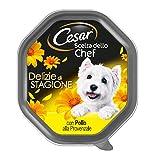 Cesar Scelta dello Chef Cibo per Cane, Delizie di Stagione con Pollo alla Provenzale 150 g - 14 Vaschette