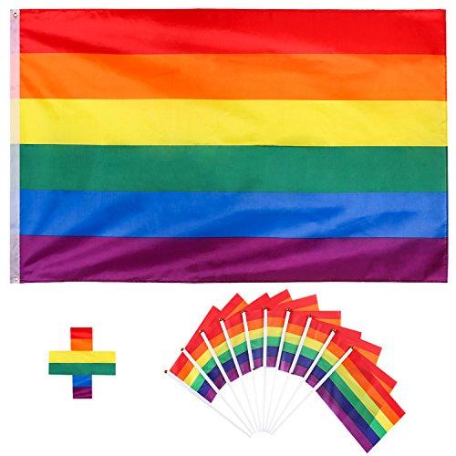 osexuell Stolz Regenbogenfahne mit 10 Pack Pride Festival Karneval Flagge (Karneval Kleine Wand Dekorationen)