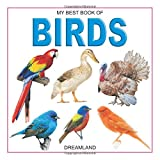 My Best Book Series - Birds, there is an attractive picture for each bird that increases the interest of the children.