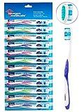 Newgen Medicals Spazzolino per la cura dei denti:spazzolini da denti di marca con pulitore lingua, duro, confezione da 12, 4colori (spazzolino per l'igiene orale)