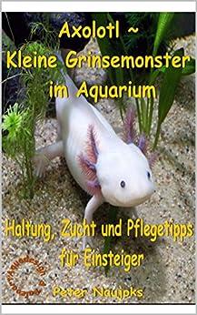 Axolotl ~ Kleine Grinsemonster im Aquarium: Haltung, Zucht und Pflege - Tipps für Einsteiger