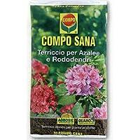 Compo Sana - Sustrato de calidad para azaleas, rododendros y plantas ácidas, saco de 80 litros