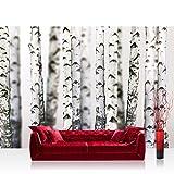 Fototapete 368x254 cm PREMIUM Wand Foto Tapete Wand Bild Papiertapete - Natur Tapete Bäume Birken Wald Stamm weiß - no. 2111