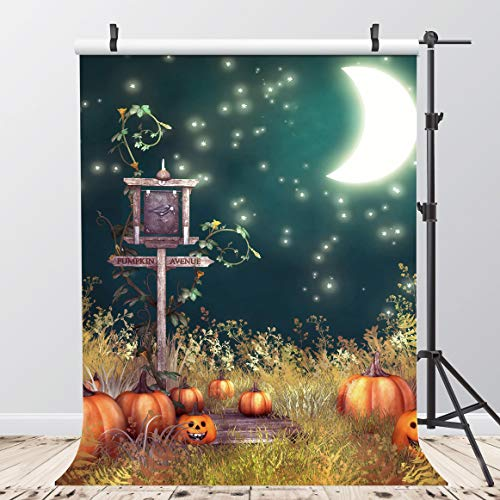 AIIKES 5 x 7FT/1,5 x 2,1M Halloween Vinyl Fotografie Hintergrund Kids Cartoon Mond Kürbis Foto Hintergrund Beleuchtung Studio Requisiten Baby-Dusche Dekoration 95-37