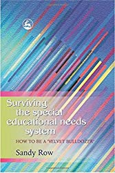 Surviving the Special Educational Needs System: How to be a 'Velvet Bulldozer'