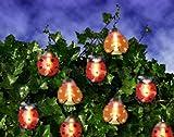 Magisch leuchtende Marienkäfer - Lichterkette für Bäume, Büsche , Pflanzen und Wohnung , Haus , Garten und Kinderzimmer - Dekoration und Party - hochwertige Lichterkette - spritzwassergeschützt für drinnen und draussen - Gesamtlänge 8,00 Meter - 40 Lichter ( 4 Lichter pro Marienkäfer )
