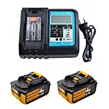 2x 18V 4.0Ah Ersatz Akku für Makita Baustellenradio DMR110 DMR108 DMR107 BMR100 DMR102 DMR106 DMR104 DMR110 BMR101 DMR112 Werkzeugakku mit Indikator mit 3A DC18RC Ladegerät